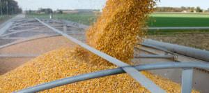 Переработка и хранение зерна
